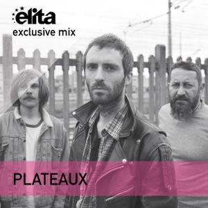 Plateaux x Elita - Radio Plateaux ◆ Exclusive Mix 029