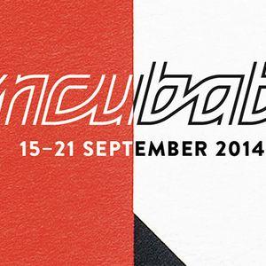 Daydream nation Incubate festival 2014 edition – 16/09/2014