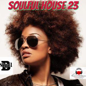 NIGEL B (SOULFUL HOUSE MIX 23)