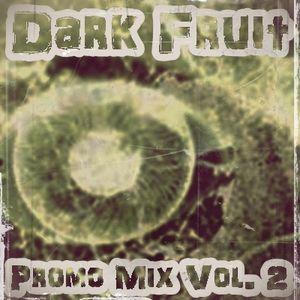 Dark Fruit - Promo Mix Vol. 2