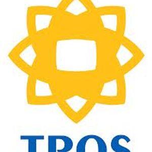 Top 100 1964 Tros 1985