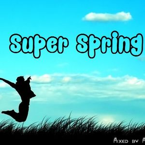 MrVinyl - Super Spring