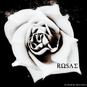 Mike Stern - Rosae