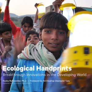 Breakthrough Innovations in the Developing World