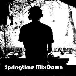 Springtime BigBeat vs. Minimal 02.2011