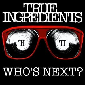 True Ingredients - DJ/Vocals Demo 2010