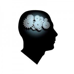 Mind Works 1