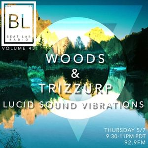 Woods & Trizzurp  Beat Lab 45
