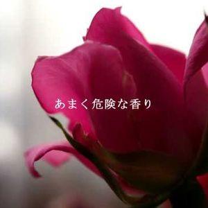 もっと、あまく危険な香り 山下達郎 Tatsuro Yamashita