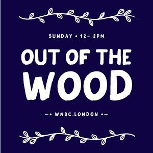 Out of the Wood Show 27 - Pete W & Matthew Court