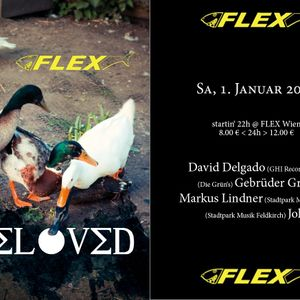 David Delgado, Gebrueder Gruen, Markus Lindner & Jokl @ Be Loved - Flex Club Wien, 02-01-2011