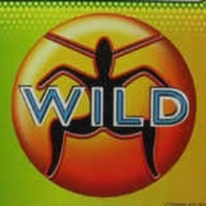 Old Skool Wild Mix