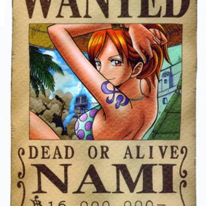 Animix #1 - Nami (One Piece)