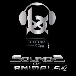 The Sounds of Animals