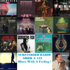 SURFINBIRD RADIO SHOW # 442 BLUES WITH A FEELING !