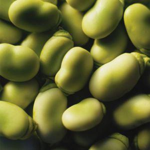 Good Times International - Lima Beans Mix