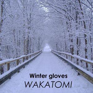 Winter Gloves (Wakatomi's November 2013 mix)