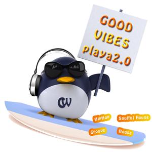 GOOD VIBES - playa2.0