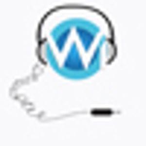 W-I.de MMA Podcast #005