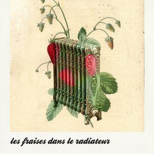 les fraises dans le radiateur s01ep01