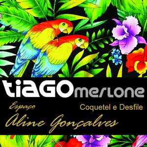 Dj Tiago Merlone - Drum 'n' Bass 02 (Desfile Espaço Aline Gonçalves)