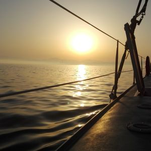 GREG GRINGO : LAST SUMMER