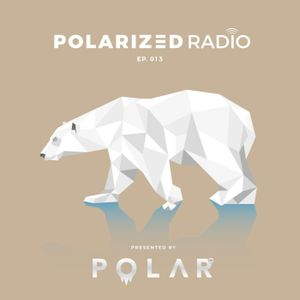Official PolarCast: Polarized Radio — EP. 013