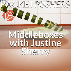 Show 282: Why We're Stuck With Middleboxes And How To Improve Them