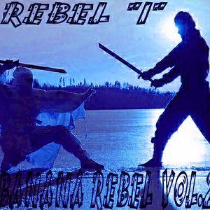 """DJ Diablo aka Rebel  """"I"""" Banana Rebel Vol.2 """"Revenge Of The Ninja"""" 2010"""