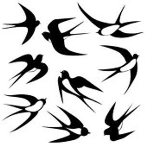 JORDI CARRERAS_Swallow Summer 2014 (Classics Deep ReVision)
