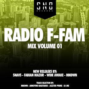 SO NOT BERLIN - RADIO F-FAM - MIX VOLUME ONE