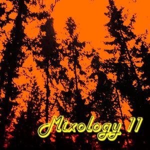 Mixology 11