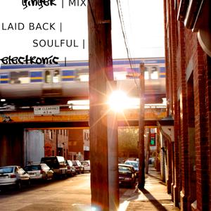 laid back electro soul