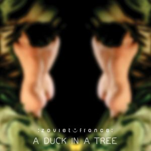A Duck in a Tree 2013-11-23 | Twice Turned