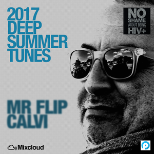 Groove Infected | Summer Tunes 2017 | Mr Flip Calvi