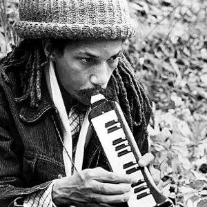 Funky Reggae-The Hip World of Herman Chin!