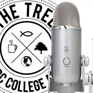Tree 01-17-17 - Audio