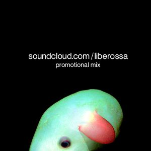 Promotional Mix, Spring 2010