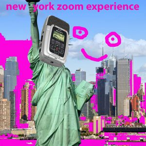new york zoom experience