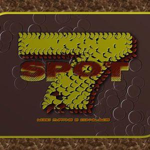 Spot Seven ( Edição 24 - Domar a nossa língua )