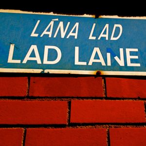 Lad Lane Live. 2016