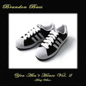 Brandon Bass - You Ain't House Vol. 2 [Deep Vibes]
