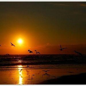 Sunrise over Miramare