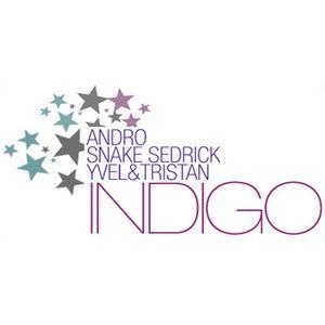 Indigo 8