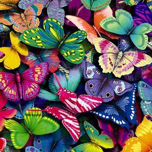 Butterfly Feeling(Soul Moments mix)