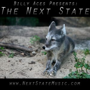 THE NEXT STATE 33