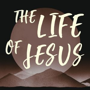 The Life of Jesus // Marty Williams