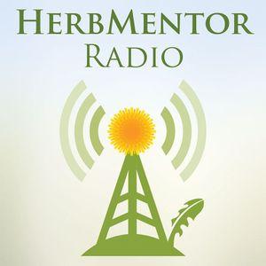 Rebecca Altman: Herbs Outside the Box