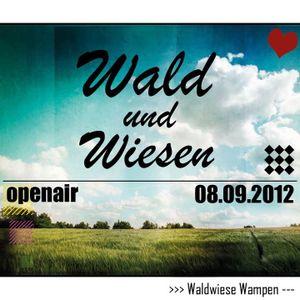 KleinKlang & Haui @ Wald und Wiesen Openair 2012