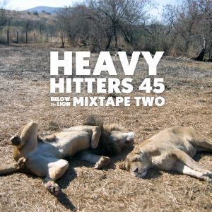 Heavy Hitters 45 - A Dubwise Mix for BelowTheLion